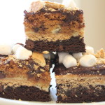 Whoa Big Daddy: Ultimate S'mores Bars!!