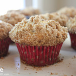 Cinnamon, Chocolate Chip & Cranberry Muffins . . . #FlyFridays