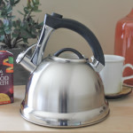 Keeping Warm with my Primula Whistling Tea Kettle (Giveaway!)