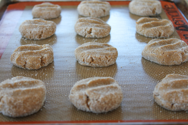 Ginger Snaps pre-oven
