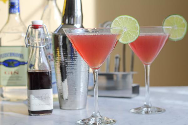 Gin Daisy Cocktails | HipFoodieMom.com