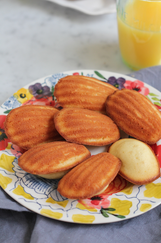 Lemon Madeleines! Your favorite French tea cake cookie with perfect notes of lemon! Perfect for spring!