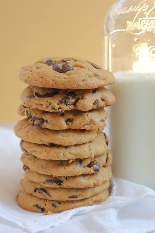 Pumpkin Peanut Butter Chocolate Chip Cookies by Hip Foodie Mom