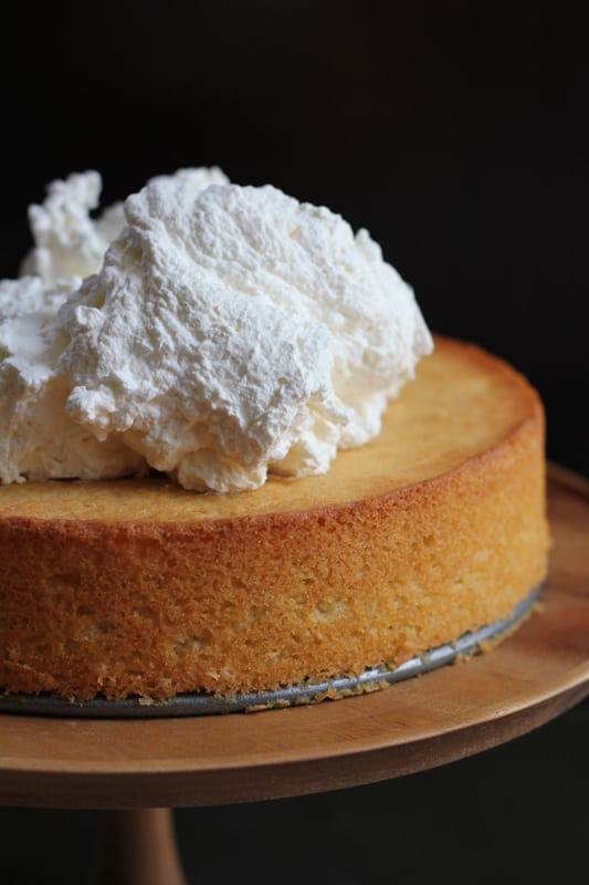 Olive Oil Honey Cake topped with whipped cream.