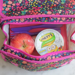 Back to School with PackIt Freezable Bags + A Giveaway!