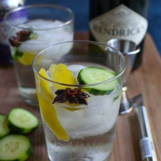The Best Gin and Tonic
