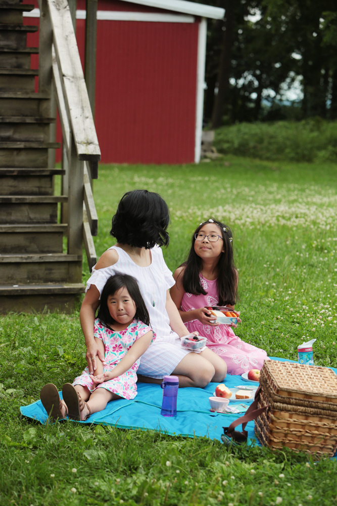 The perfect picnic! Take some time these last few weeks of summer, pack a lunch and head out with your kids! We packed our favorite pasta salad, raw veggies, fruit and my kids' favorite Wholesome Organic DelishFish candies.