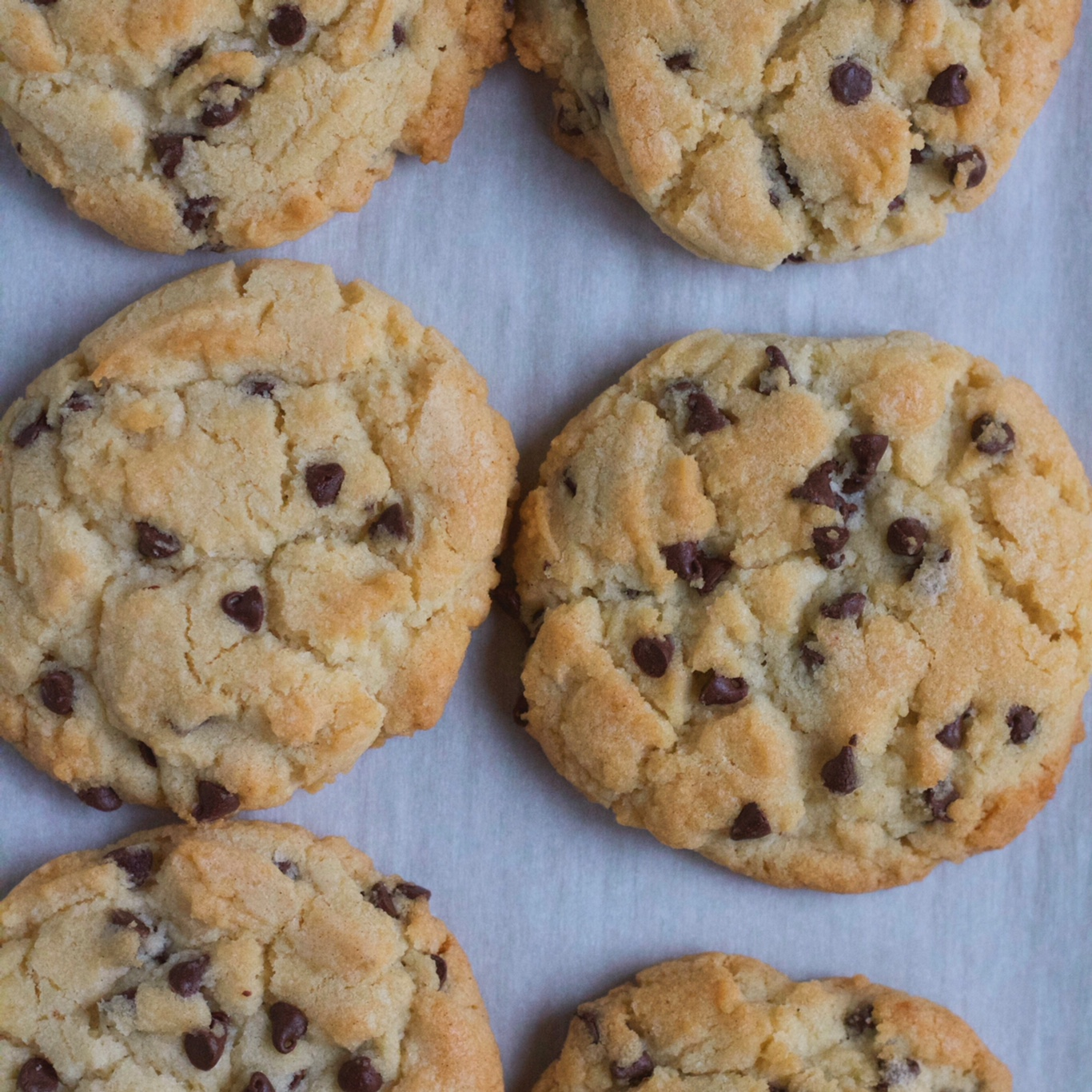Chocolate Chip Sugar Cookies Hip Foodie Mom